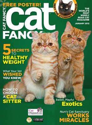 Cat Fancy Subscription
